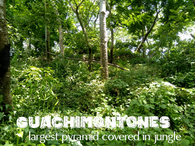 Guachimontones, largest pyramid covered in jungle